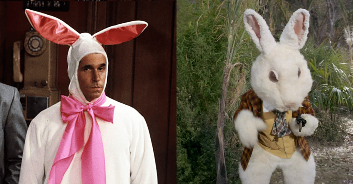 10 rabbits and actors in bunny costumes that hopped up on
